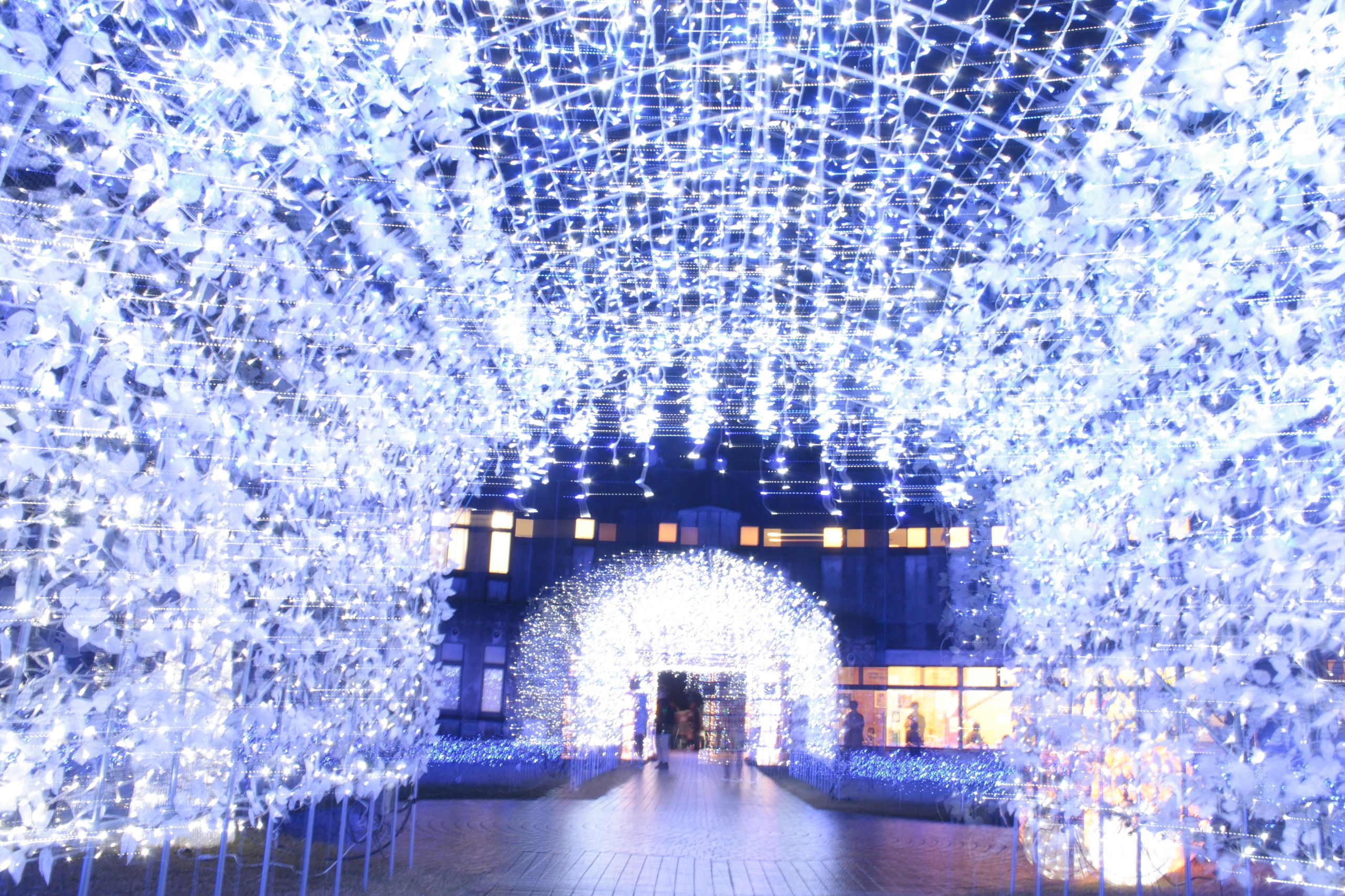 Oyabe Illumination