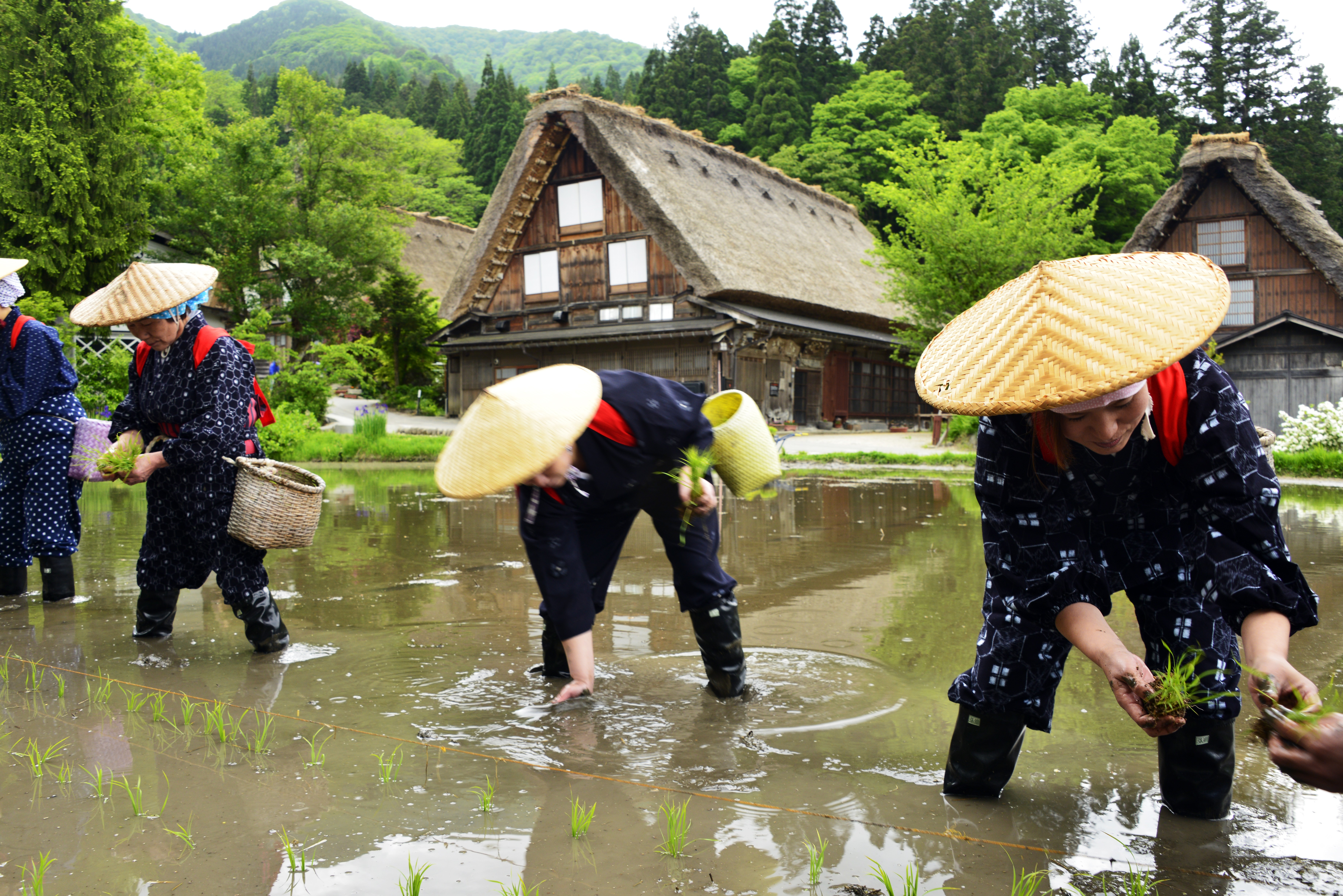 Rice-Planting Festival