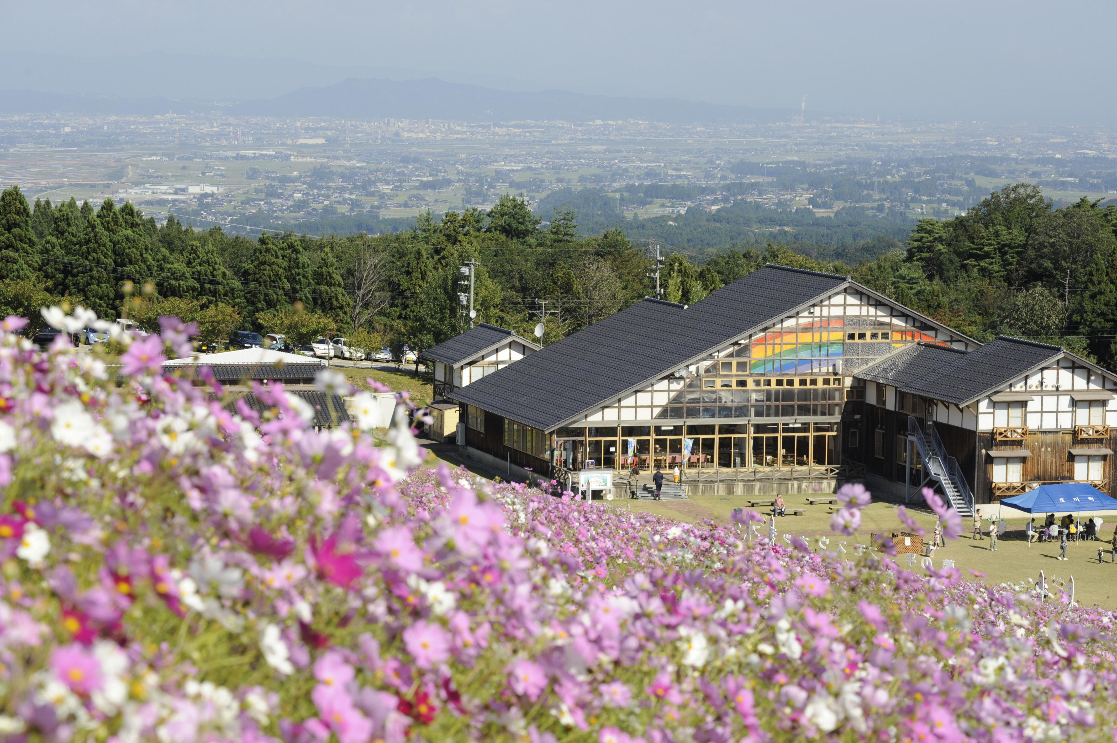 [Toyama] Tonami Yumenotaira Ski Resort