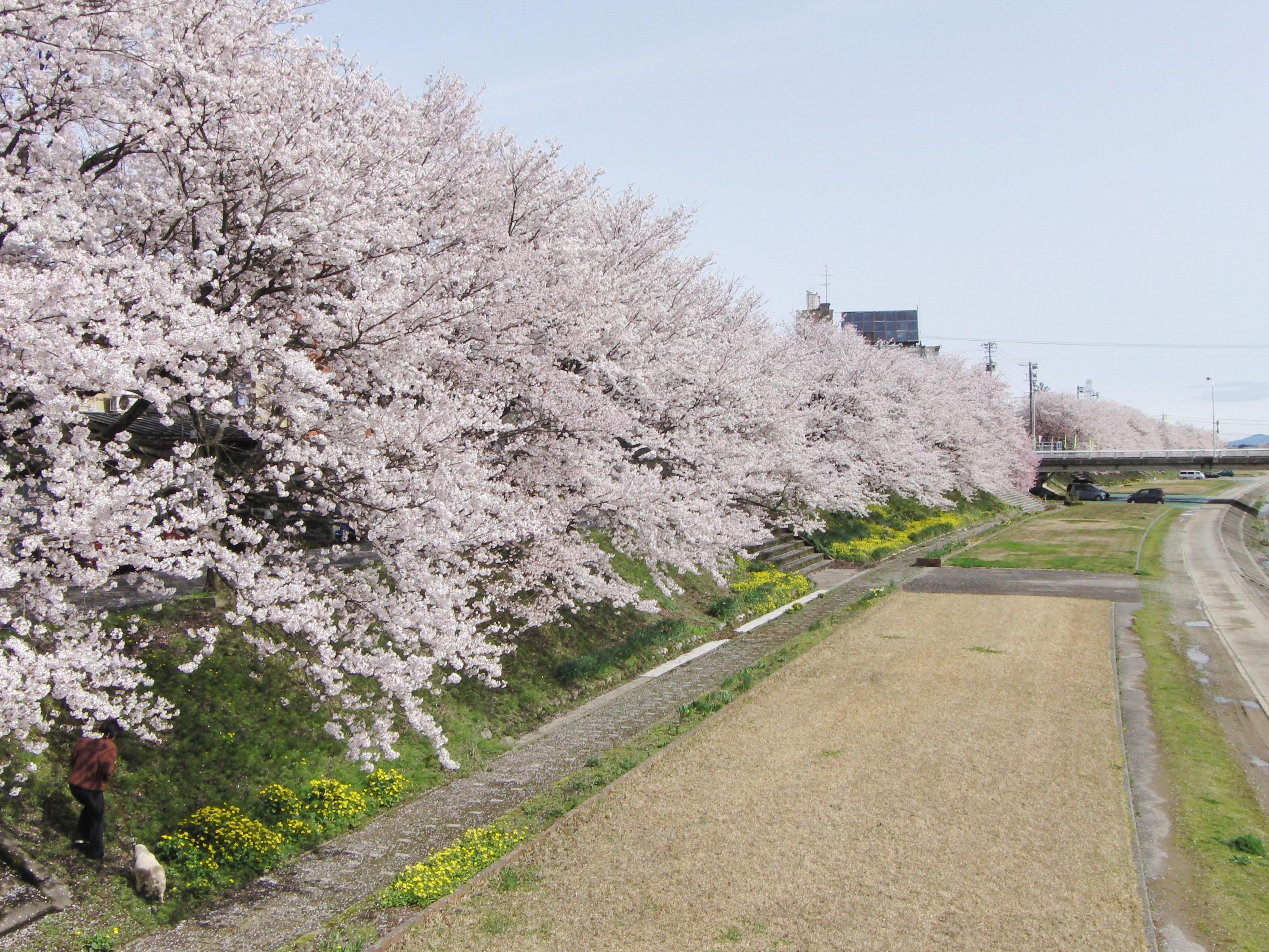 Oyabegawa Riverside Park